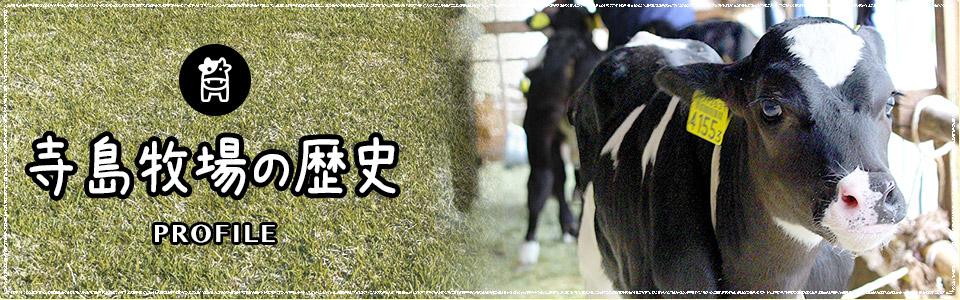 寺島牧場の歴史